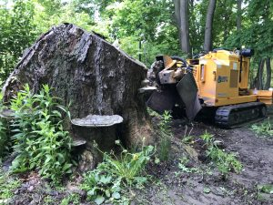 Sylvester Stump Grinding LLC