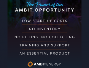 Hawk Energy, Ambit Energy Consultants