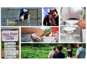 Saco River Farms