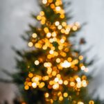 28th Annual Freeport Sparkles for the Holidays